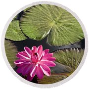 Pink Water Lily II Round Beach Towel