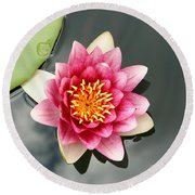Pink Waterlily And Cloud Reflection Round Beach Towel