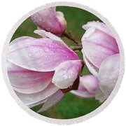Pink White Wet Raindrops Magnolia Flowers Round Beach Towel