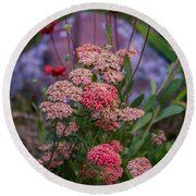 Pink Yarrow Round Beach Towel