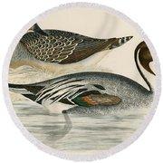 Pintail Duck Round Beach Towel