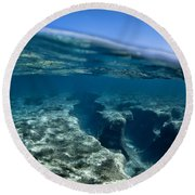 Pipe Reef. Round Beach Towel