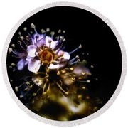 Anthers Round Beach Towel