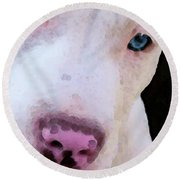 Pit Bull Art - Not A Fighter Round Beach Towel