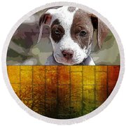 Pitbull Puppy Round Beach Towel