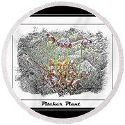Pitcher Plant Illustration Round Beach Towel
