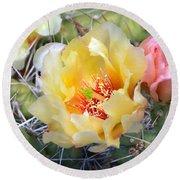 Plains Prickly Pear Flower Round Beach Towel
