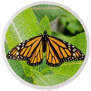 Plant Milkweed And Save The Monarch Butterfly Round Beach Towel