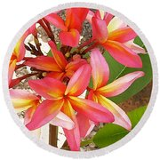 Plantation Plumeria Round Beach Towel