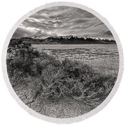 Plants On The Alvord Desert Round Beach Towel