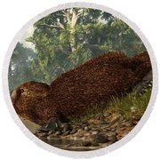 Platypus On The Shore Round Beach Towel