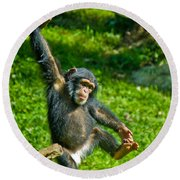 Playful Chimp Round Beach Towel