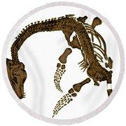 Pleisiosaurus, Mesozic Marine Reptile Round Beach Towel