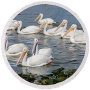 Plenty Of Pelicans Round Beach Towel