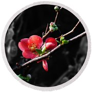 Plum Blossom 3 Round Beach Towel