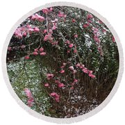 Plum Blossom In The Snow Round Beach Towel