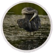 Plumage Perfection Round Beach Towel