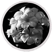 Plumeria Black White Round Beach Towel