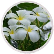 Plumeria In The Rain Round Beach Towel