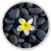 Plumeria Pebbles Round Beach Towel