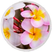 Plumerias Of Paradise 12 Round Beach Towel