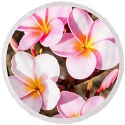 Plumerias Of Paradise 2 Round Beach Towel