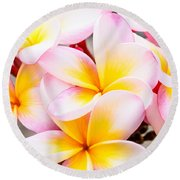 Plumerias Of Paradise 6 Round Beach Towel