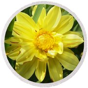 Pocketful Of Sunshine Round Beach Towel