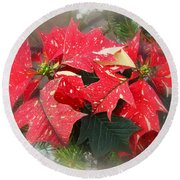 Poinsettia In Red And White Round Beach Towel