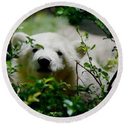 Polar Bear Cub Round Beach Towel