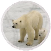 Polar Bear With Cub Round Beach Towel