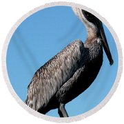 Pole With Pelican  Round Beach Towel