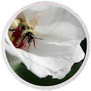 Pollenated Bumblebee Round Beach Towel