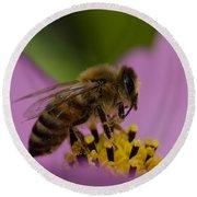 Pollination Round Beach Towel