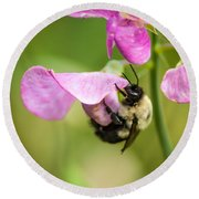 Pollination Nation Viii Round Beach Towel