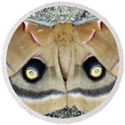 Polyphemus Moth  Round Beach Towel