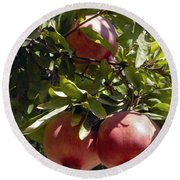Pomegranate Tree  Round Beach Towel