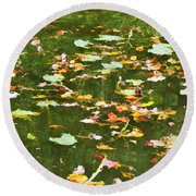 Pond 2 Round Beach Towel