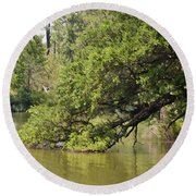 Pond At Norfolk Botanical Garden 10 Round Beach Towel
