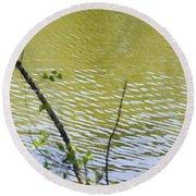 Pond At Norfolk Botanical Garden 8 Round Beach Towel