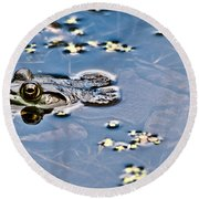 Pond Dweller Round Beach Towel