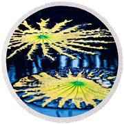 Pond Lily Pad Abstract Round Beach Towel