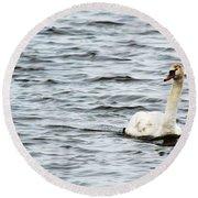 Pond Swan Round Beach Towel