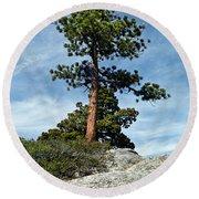Ponderosa Pine And Granite Boulders Round Beach Towel
