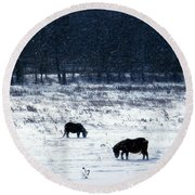 Ponies In The Snow Round Beach Towel