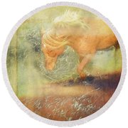 Pony In The Grasses Round Beach Towel