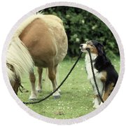 Pony With Lead Rope Held By Sitting Dog Round Beach Towel