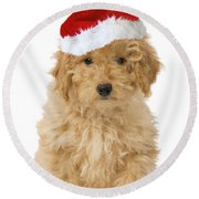 Poodle In Christmas Hat Round Beach Towel