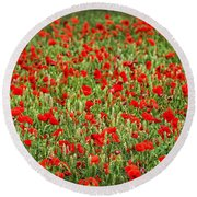 Poppies In Wheat Round Beach Towel