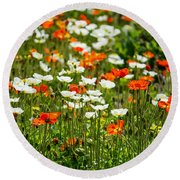 Poppy Fields - Beautiful Field Of Spring Poppy Flowers In Bloom. Round Beach Towel